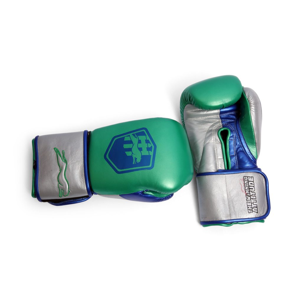 Harrier Pro Boxing Gloves - ghp02-6