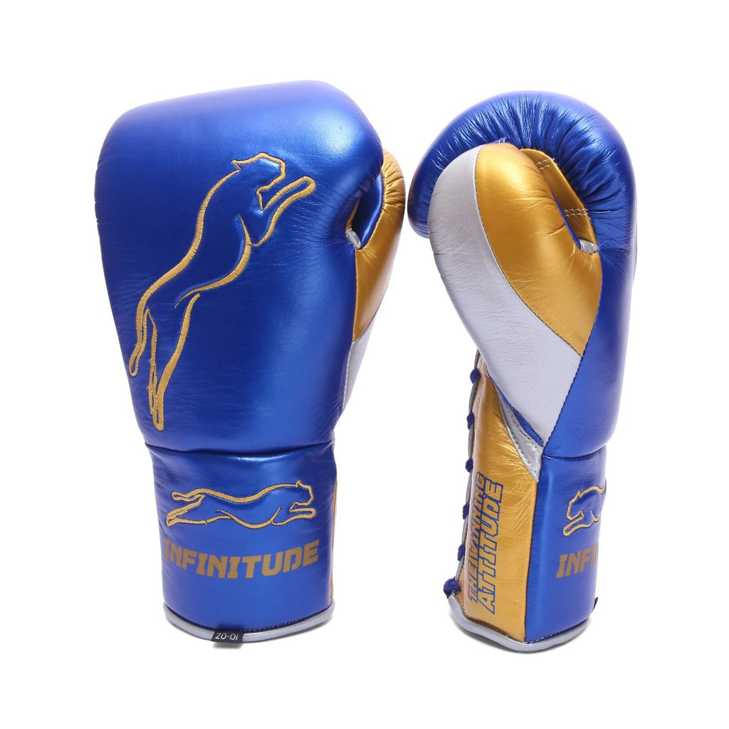 Stealth X2 Boxing Gloves - gsx01-6